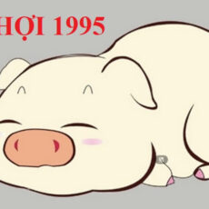 Sinh năm 1995 hợp màu gì? Chọn màu sắc nào để phong thủy tốt